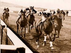 Celebrate, wins the 1928 Newick Selling race (Lewes). Image used with permission from www.lewesracecourse.com