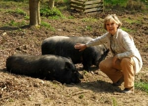 Alexandra with potbellied pigs, Ant & Dec