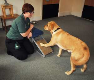 Trainer Amy Ashton with Shannon an Autism Assistance Dog