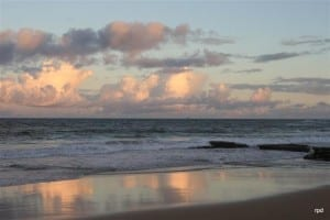 Shelly Beach reflections