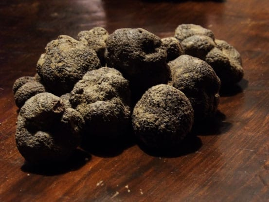 Black-truffles-from-Richerenches