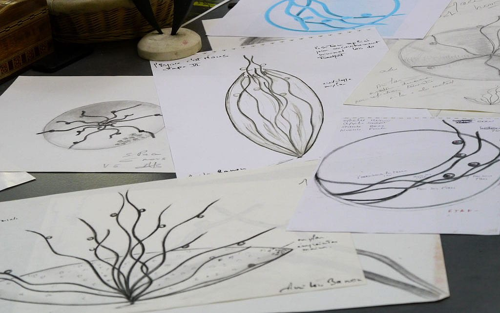 Sketches for the Vitae project