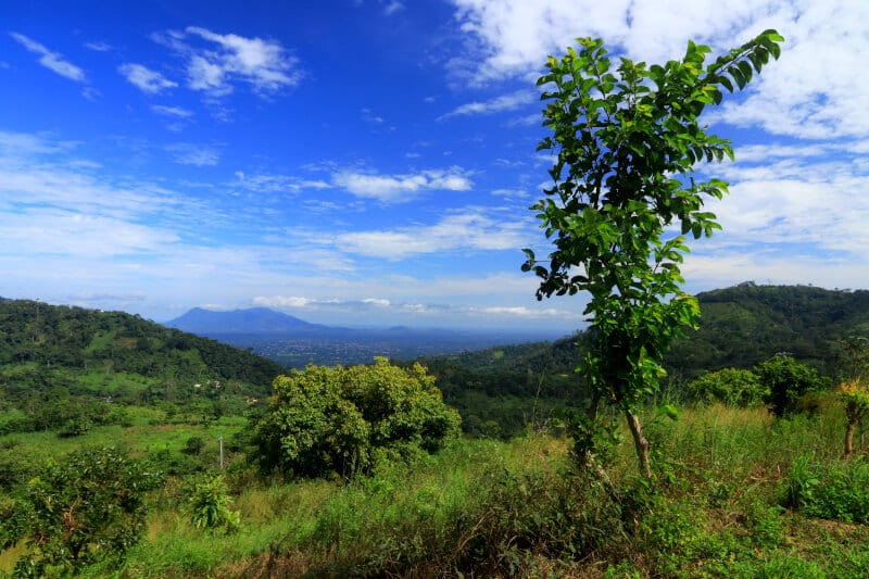Looking across to Kpalime and Mnt Agou beyond