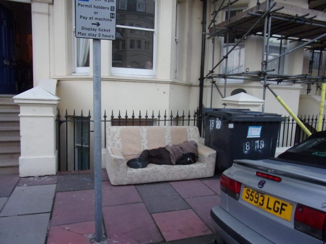 Queens Gardens sofa with new resident