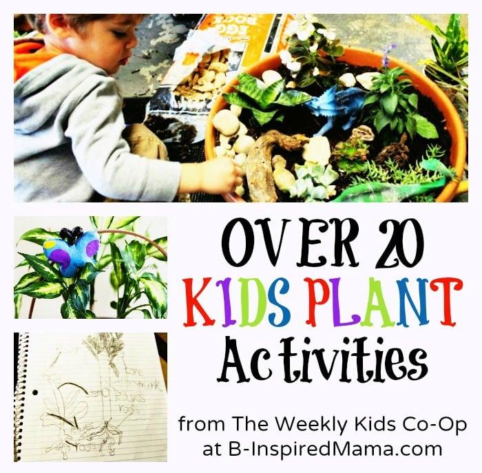 Kids Plant Activities