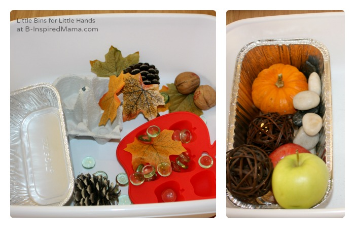 Sorting Fall Materials for a Preschool Science Experiment at B-Inspired Mama