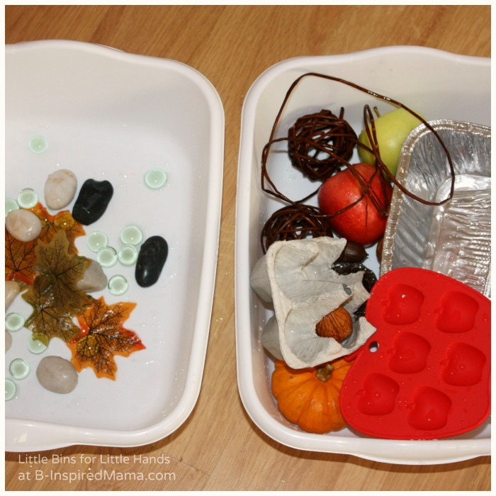 Sorting What Sinks and What Floats for a Fall Preschool Science Activity at B-Inspired Mama
