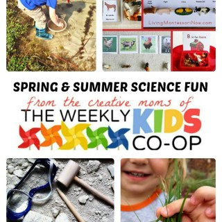 Fun Spring and Summer Science for Kids