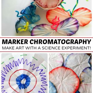 Marker Chromatography Science Experiment