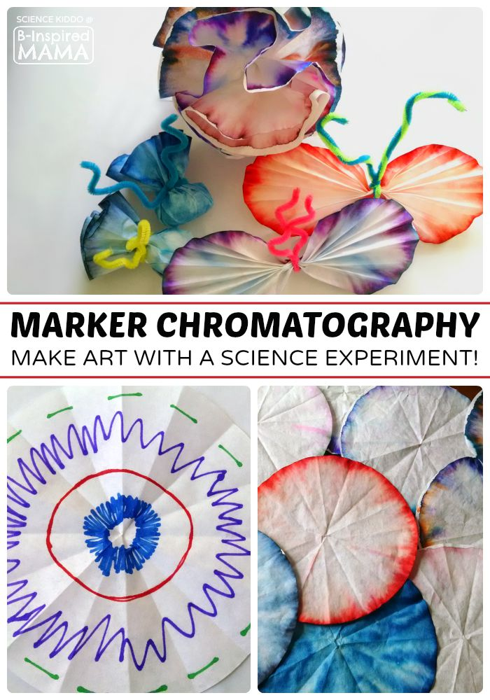 Marker Chromatography Science Experiment for Kids - Combining Art and Science at B-Inspired Mama