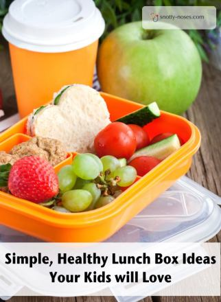 Healthy Lunch Box Ideas Your Kids Will Love