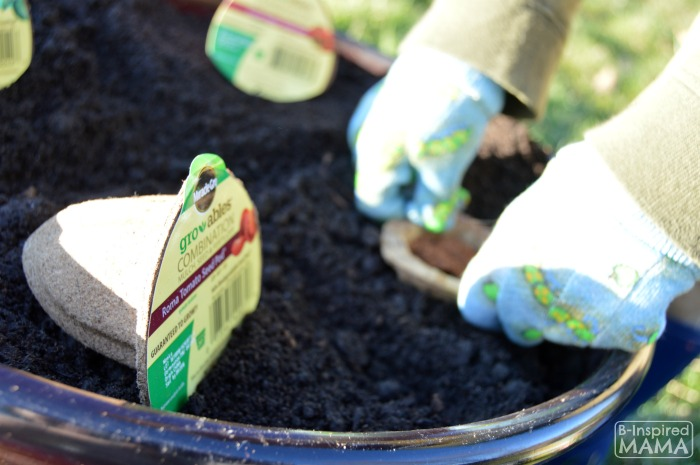 Planting a Pizza Garden in a DIY Pizza Garden Planter - JC Planting the Easy Gro-able Seed Pod - at B-Inspired Mama