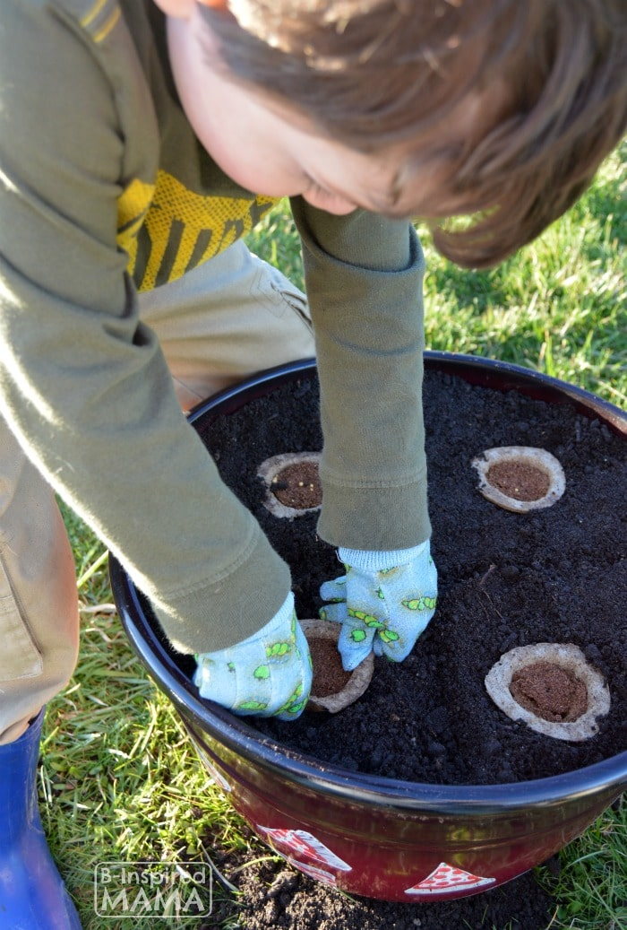 Planting a Pizza Garden in a DIY Pizza Garden Planter - JC Pushing Down the Gro-able Seed Pod - at B-Inspired Mama