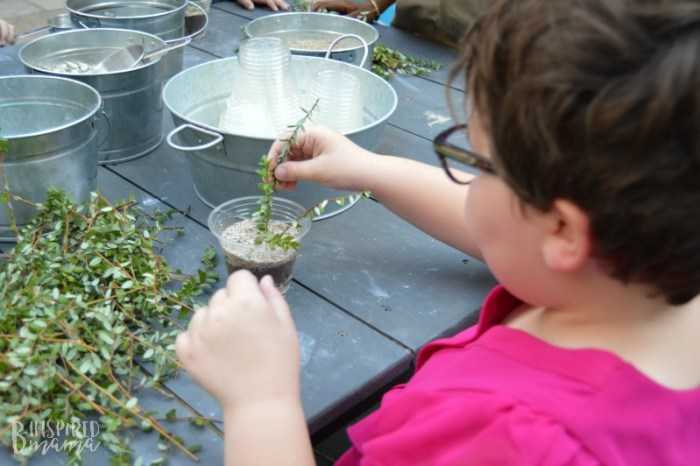 Priscilla planting her Bog-In-A-Cup at the Ocean Spray Cranberry Classroom