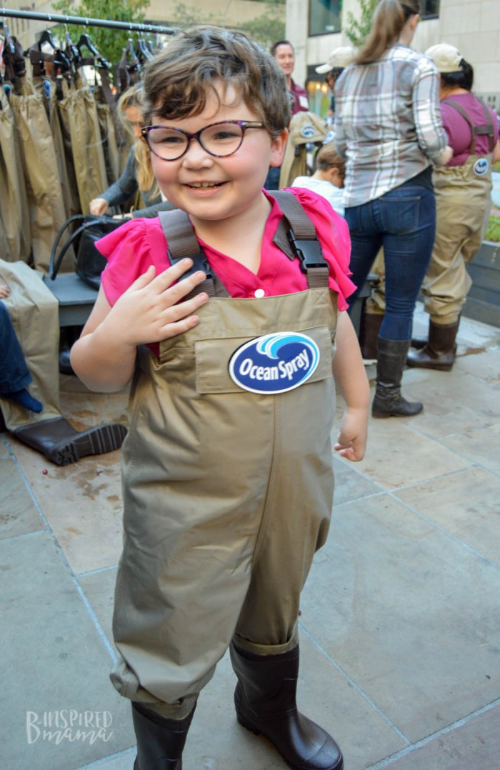Priscilla putting on her waders to get in the cranberry bog at the Ocean Spray #CranberryClassroom in NYC