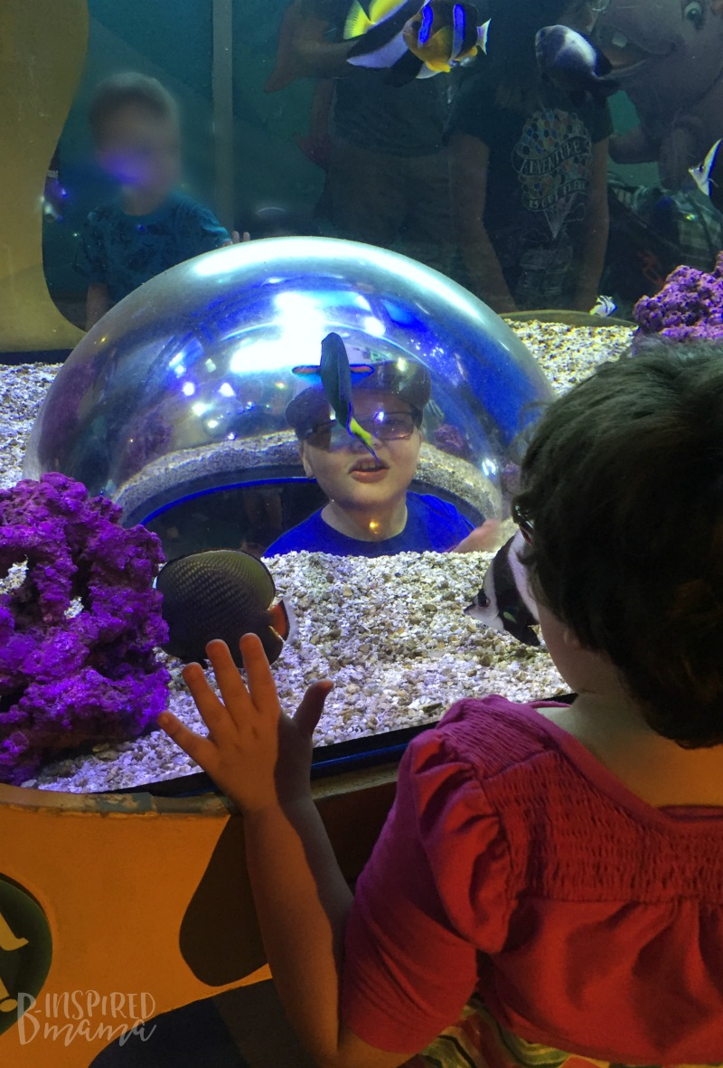 Sawyer getting an inside look at the Aquarium