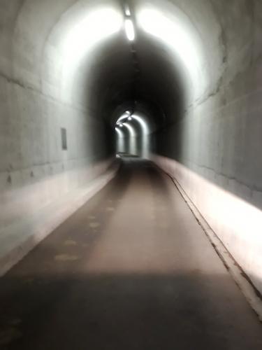 Lago di Luzzone Tunnel in Staumauer