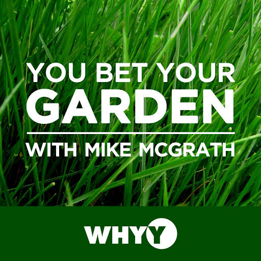 """An hour of """"chemical-free horticultural hijinks,"""" You Bet Your Garden, hosted by Mike McGrath, is a weekly, nationally syndicated Public Radio show airing out of WHYY-FM in Philadelphia that offers fiercely organic advice to gardeners far and wide."""