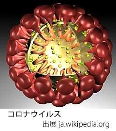 WPPhto200125-4.jpg