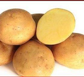 Kentang Solanum Tuberosum Jenis Dan Manfaat Buah Pikiran