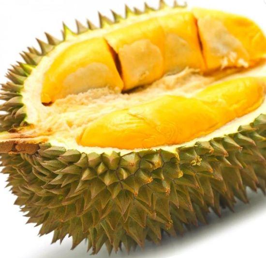 varietas durian