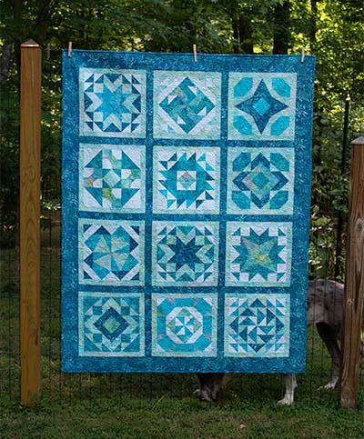 Sampler Quilt Finished with Pictures