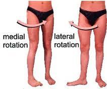 internal-and-external-hip-rotation