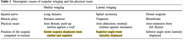 Scapular winging chart