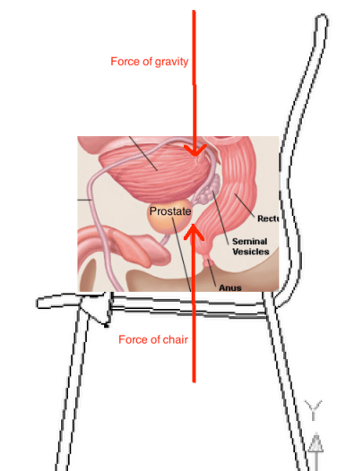 Chair and prostate lines
