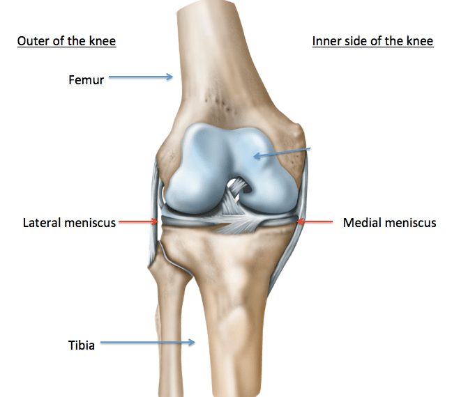 what can be done for torn cartilage in the knee