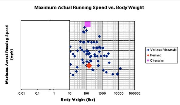 Maximum running speed versus body weight over 10 pounds