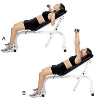 db-bench-press