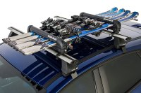 Rooftop Ski Rack - Lovequilts