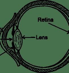 wiring diagram eye pattern drawing [ 1198 x 750 Pixel ]
