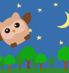 owl night sky computer [ 1155 x 750 Pixel ]