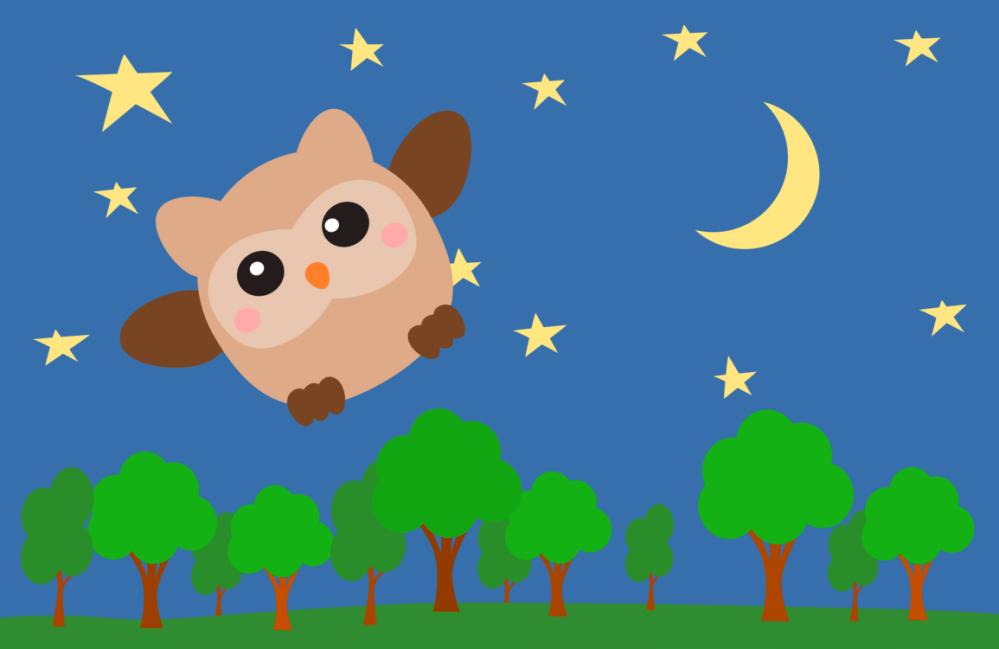 medium resolution of owl night sky computer