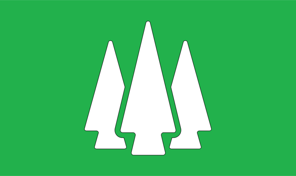 medium resolution of forest tree video gratis public domain