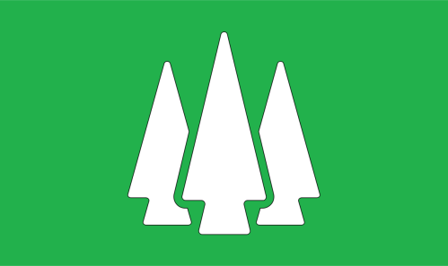 small resolution of forest tree video gratis public domain