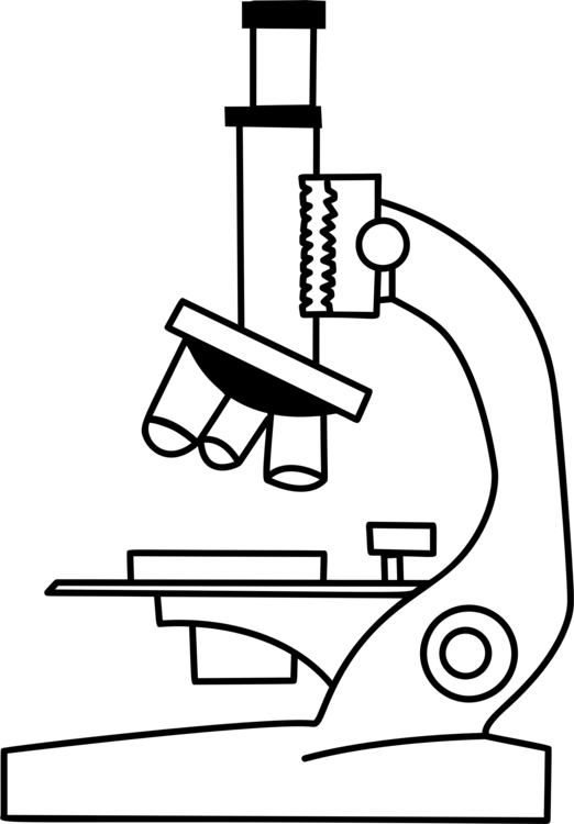 Optical microscope Drawing Line art Electron microscope