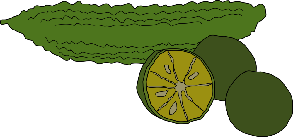 medium resolution of bitter melon coffee food vegetable pumpkin