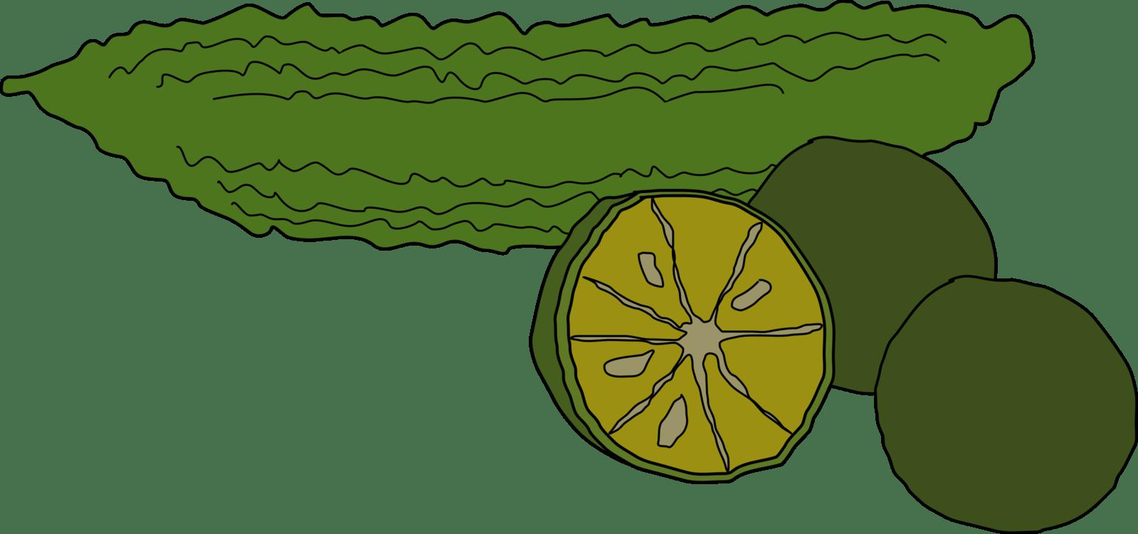 hight resolution of bitter melon coffee food vegetable pumpkin