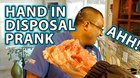 Severed Hand Disposal Prank!!