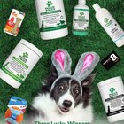 Enter To Win Awesome Prizes For You and Your Pup including a $75 Amazon gift card, Nylabones, ChuckIt Ball, vitamins and more - 3 winners! {US} (04/18/2019)