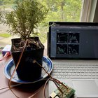 Fun summer IoT projects to do at home during #JulyOT