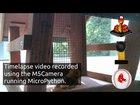 Timelapse camera using MicroPython, an M5Camera and MQTT
