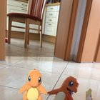 Paper charmander and his new friend.