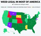 2020 elections: Marijuana legalization measures in 5 states could grow industry by $9 billion