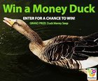 Win the Money Duck each bar inside contains cash (07/16/2018) {US CA}