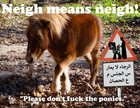 Neigh means neigh!! New Warning Signs Just Added To All Kids Petting Zoos in Berlin