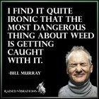 Bill Murray Wise Words of Wisdom